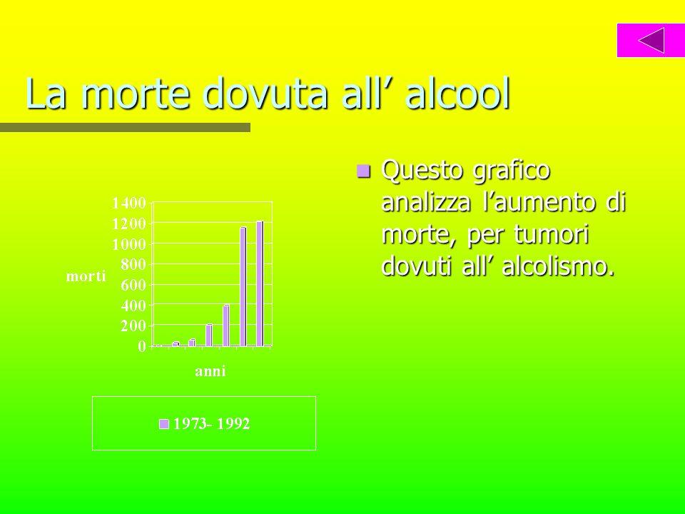 L alcool La morte dovuta all alcool I danni L etanolo L assorbimentoassorbimento