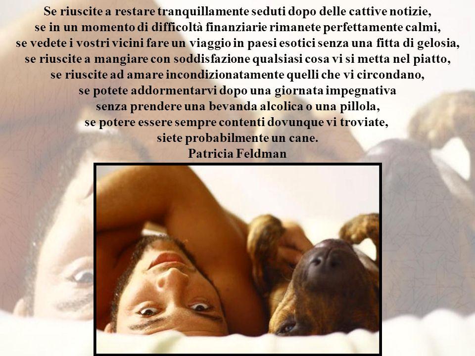 Gli animali non solo provano affetto, ma desiderano essere amati C.H. Darwin