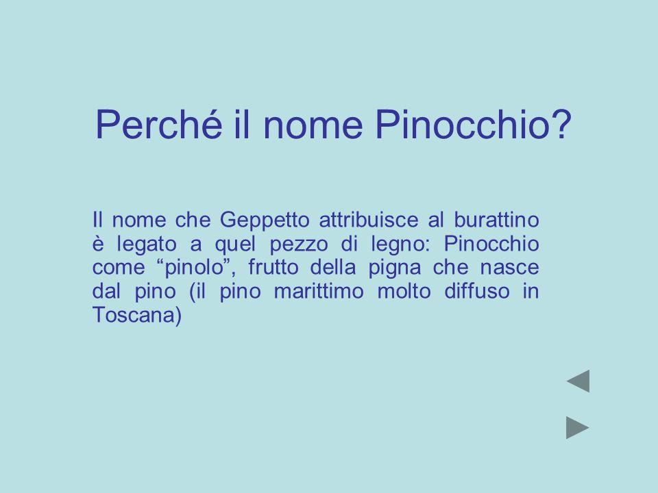 Perché il nome Pinocchio? Il nome che Geppetto attribuisce al burattino è legato a quel pezzo di legno: Pinocchio come pinolo, frutto della pigna che