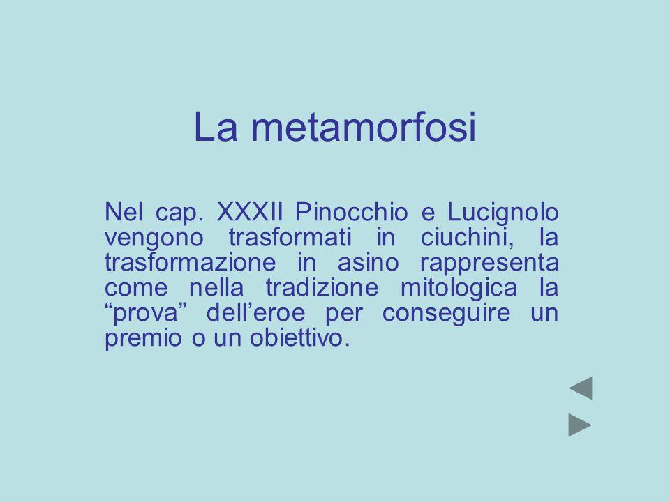 La metamorfosi Nel cap. XXXII Pinocchio e Lucignolo vengono trasformati in ciuchini, la trasformazione in asino rappresenta come nella tradizione mito