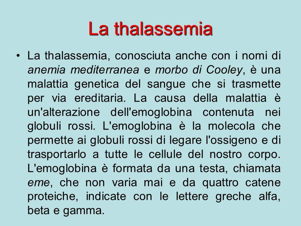 La thalassemia La thalassemia, conosciuta anche con i nomi di anemia mediterranea e morbo di Cooley, è una malattia genetica del sangue che si trasmette per via ereditaria.