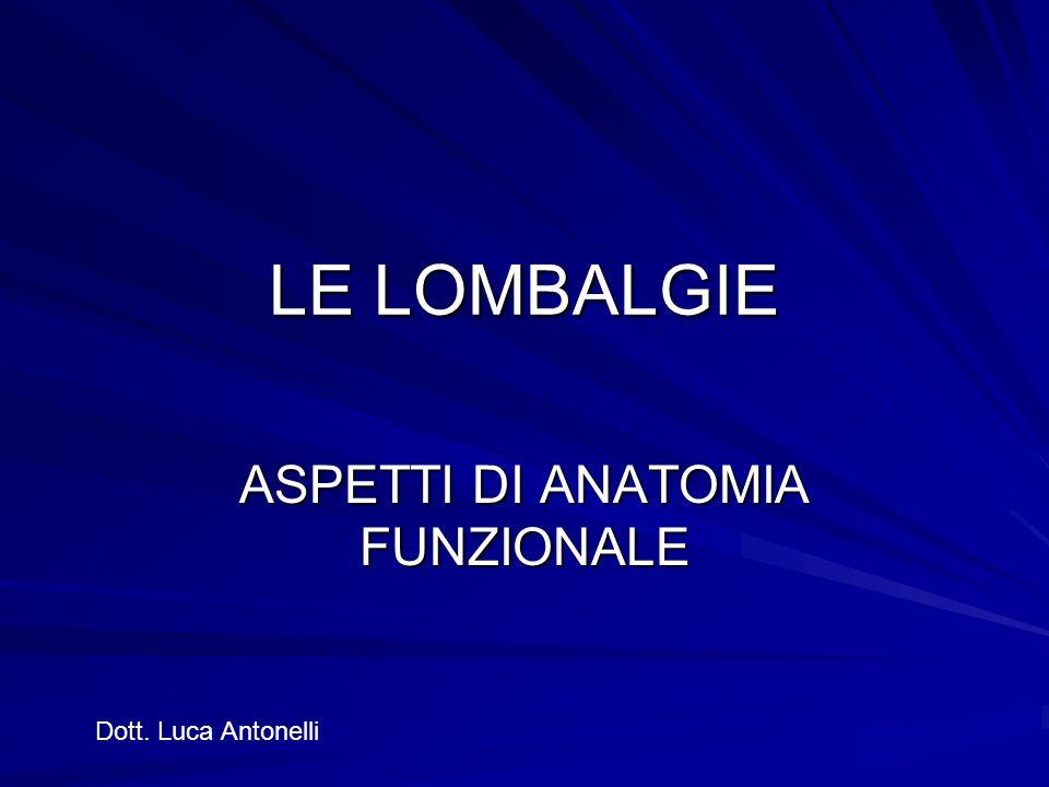LE LOMBALGIE ASPETTI DI ANATOMIA FUNZIONALE Dott. Luca Antonelli