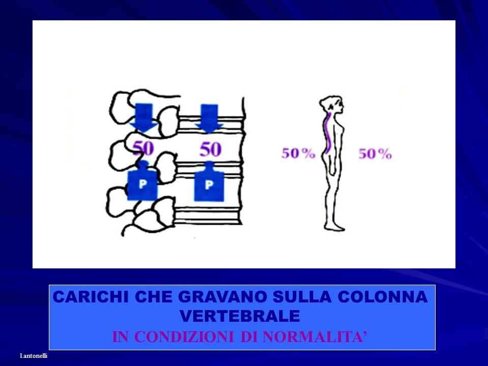CARICHI CHE GRAVANO SULLA COLONNA VERTEBRALE IN CONDIZIONI DI NORMALITA l.antonelli