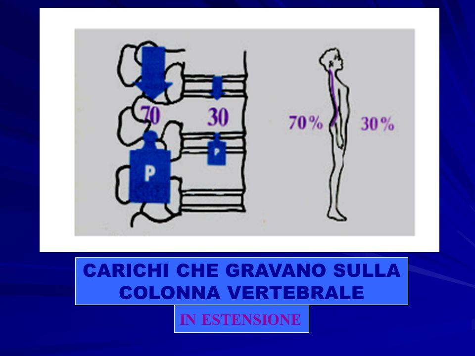 IN FLESSIONE CARICHI CHE GRAVANO SULLA COLONNA VERTEBRALE l.antonelli