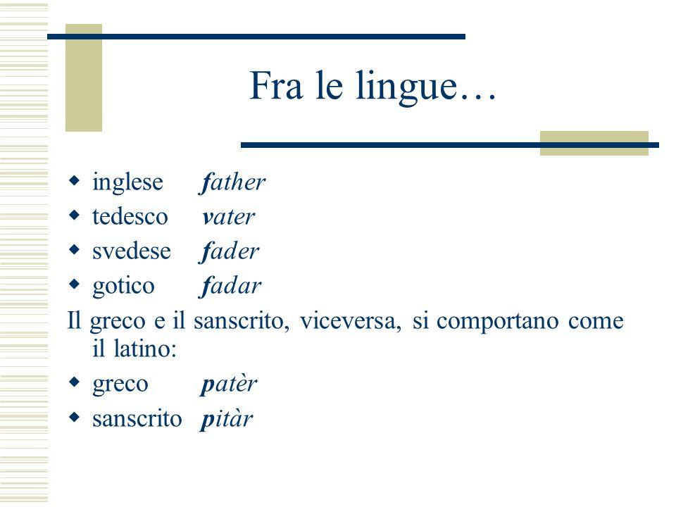Fra le lingue… inglesefather tedescovater svedesefader goticofadar Il greco e il sanscrito, viceversa, si comportano come il latino: grecopatèr sanscr