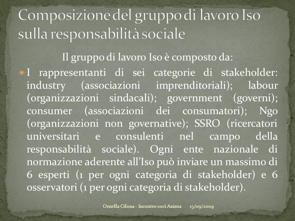 Il gruppo di lavoro Iso è composto da: I rappresentanti di sei categorie di stakeholder: industry (associazioni imprenditoriali); labour (organizzazioni sindacali); government (governi); consumer (associazioni dei consumatori); Ngo (organizzazioni non governative); SSRO (ricercatori universitari e consulenti nel campo della responsabilità sociale).