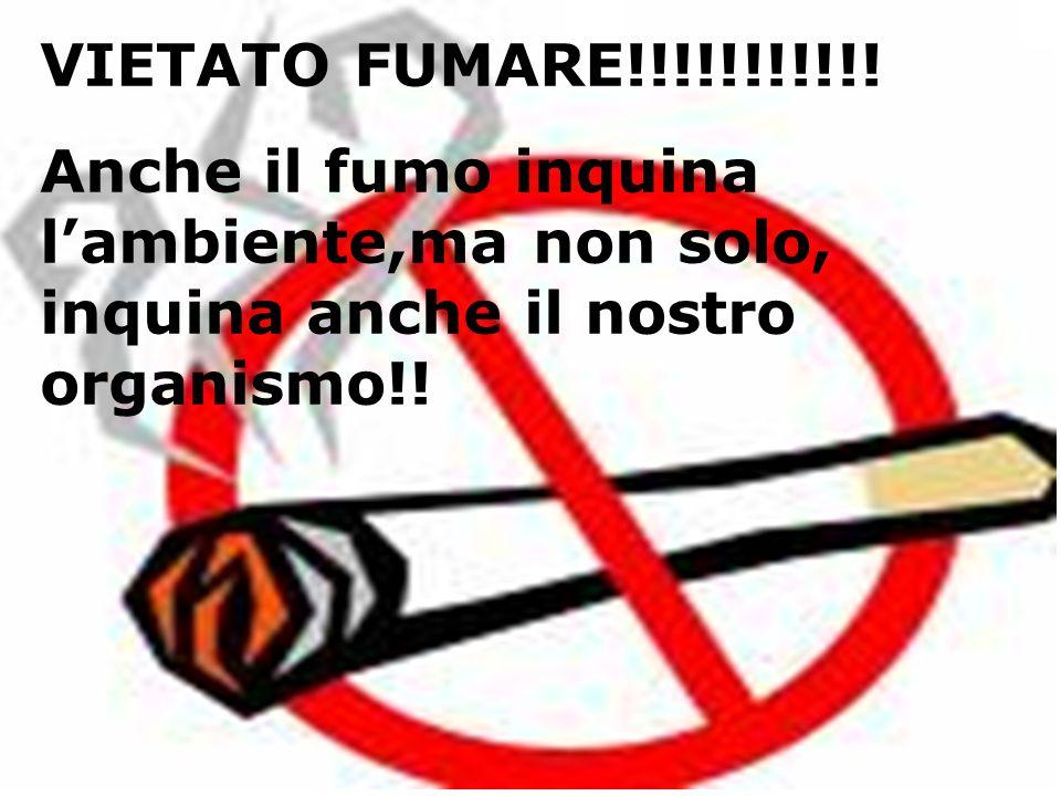 VIETATO FUMARE!!!!!!!!!!! Anche il fumo inquina lambiente,ma non solo, inquina anche il nostro organismo!!