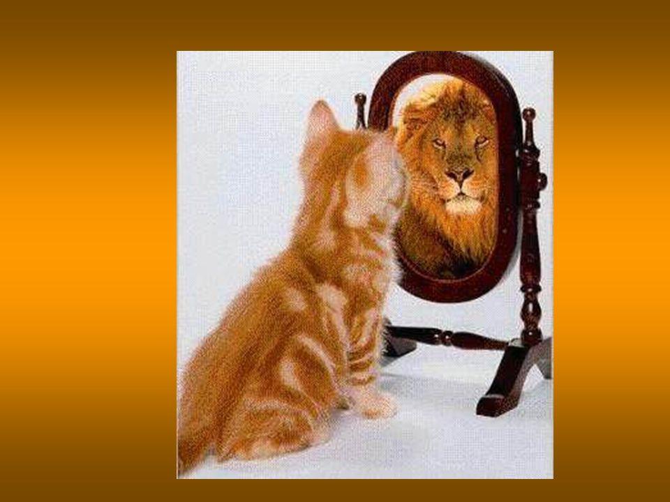Il segreto dellentusiasmo e della vitalità però non sta nella realizzazione di un grande sogno, ma nellavere un grande sogno da realizzare, nel senso