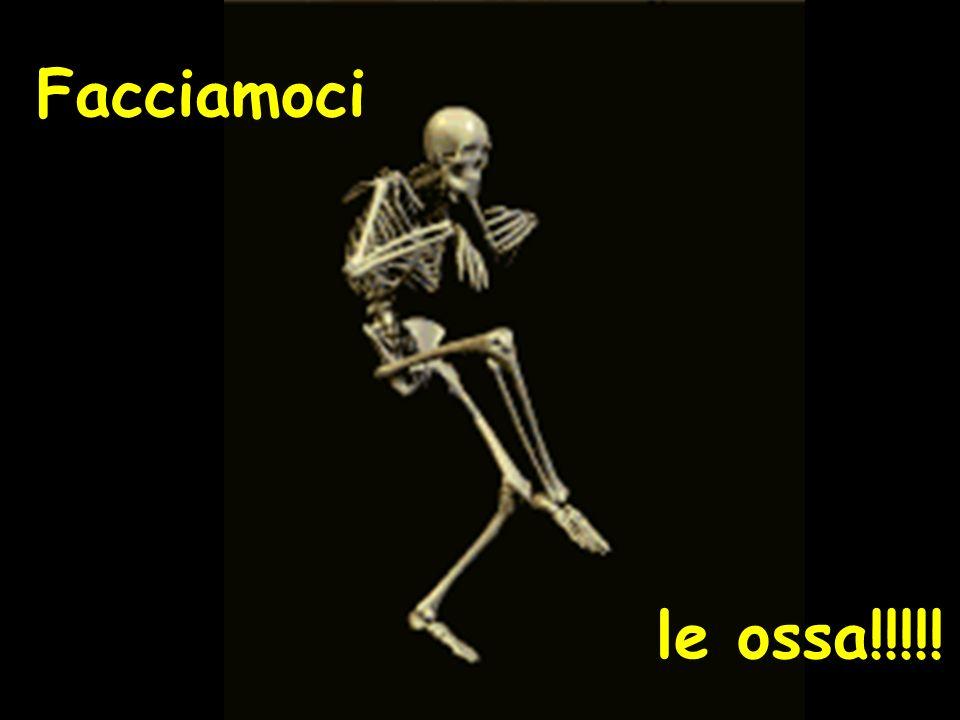 Facciamoci le ossa!!!!!