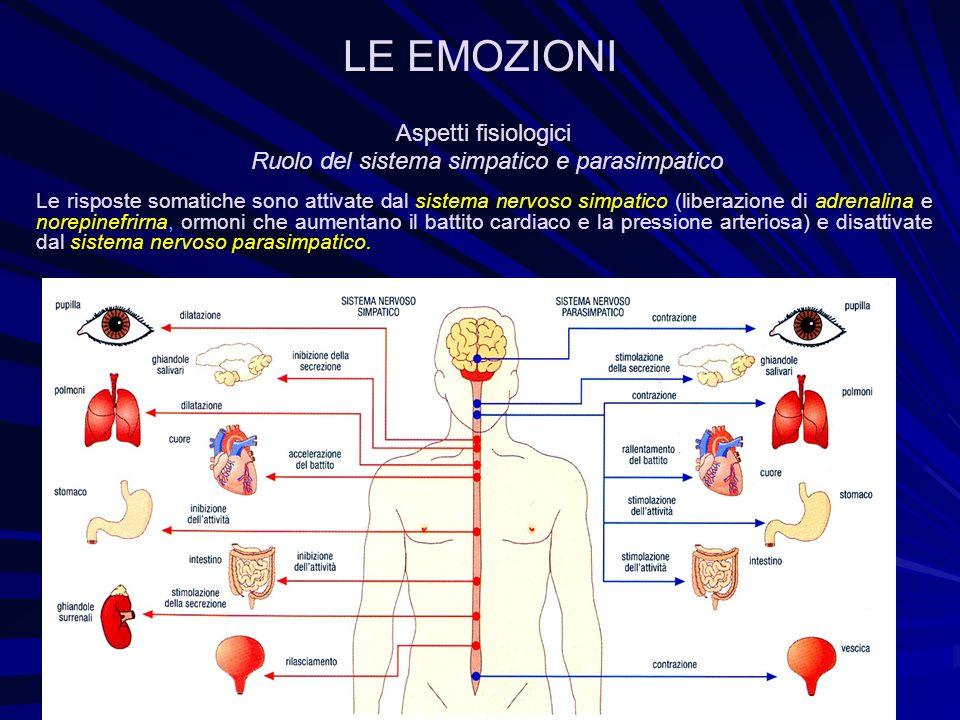 Aspetti fisiologici Ruolo del sistema simpatico e parasimpatico Ruolo del sistema simpatico e parasimpatico Le risposte somatiche sono attivate dal si