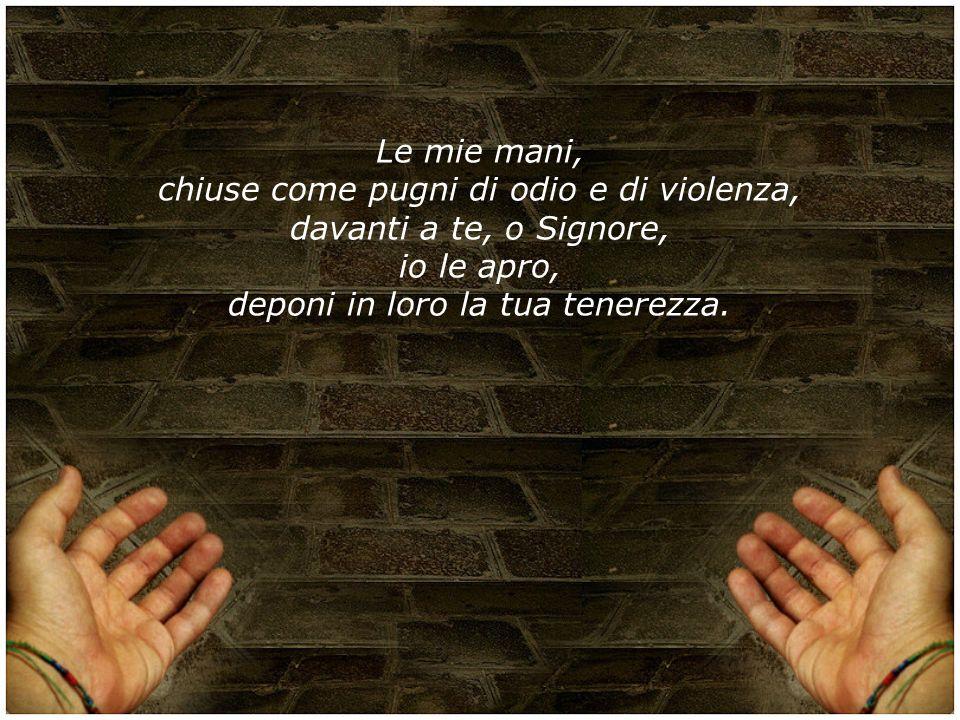 Le mie mani, chiuse come pugni di odio e di violenza, davanti a te, o Signore, io le apro, deponi in loro la tua tenerezza.