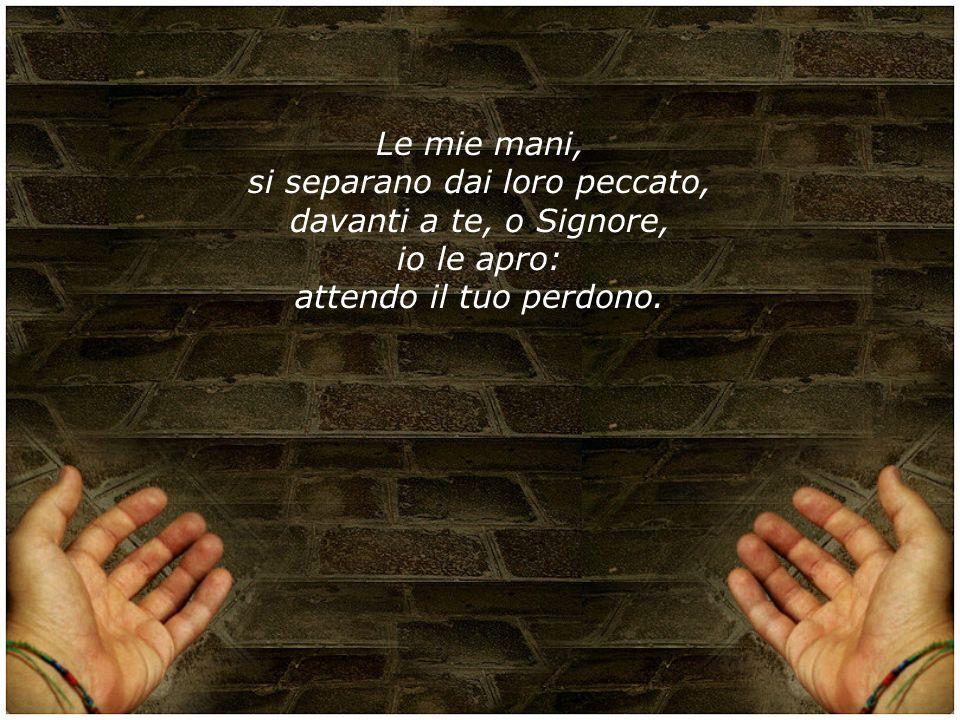 Le mie mani, si separano dai loro peccato, davanti a te, o Signore, io le apro: attendo il tuo perdono.
