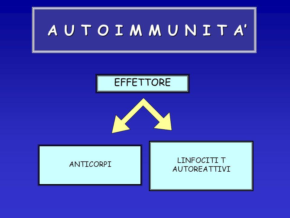 MIASTENIA GRAVIS Malattia autoimmune caratterizzata da DEBOLEZZA MUSCOLARE fluttuante, con fasi di remissione e di esacerbazione del fenomeno