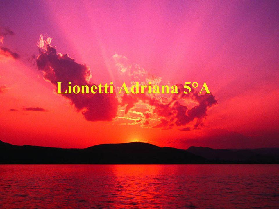 Lionetti Adriana 5°A