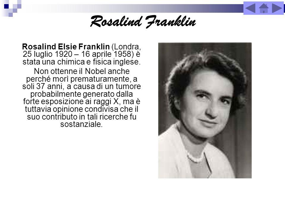 Rosalind Franklin Rosalind Elsie Franklin (Londra, 25 luglio 1920 – 16 aprile 1958) è stata una chimica e fisica inglese. Non ottenne il Nobel anche p