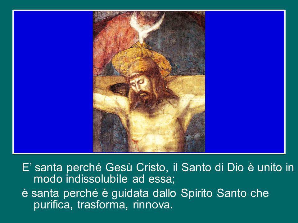 E santa perché Gesù Cristo, il Santo di Dio è unito in modo indissolubile ad essa; è santa perché è guidata dallo Spirito Santo che purifica, trasforma, rinnova.