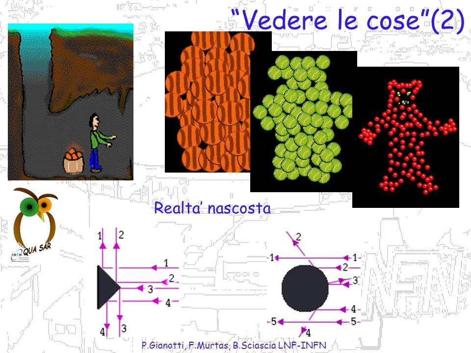 P.Gianotti, F.Murtas, B.Sciascia LNF-INFN Vedere le cose(1)