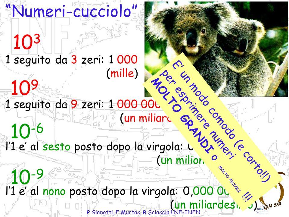 P.Gianotti, F.Murtas, B.Sciascia LNF-INFN Numeri-cucciolo 10 3 10 -6 1 seguito da 3 zeri: 1 000 (mille) 10 9 1 seguito da 9 zeri: 1 000 000 000 (un miliardo) 10 -9 l1 e al sesto posto dopo la virgola: 0,000.001 (un milionesimo) l1 e al nono posto dopo la virgola: 0,000 000 001 (un miliardesimo) E un modo comodo (e corto!!) per esprimere numeri MOLTO GRANDI o MOLTO PICCOLI !!!