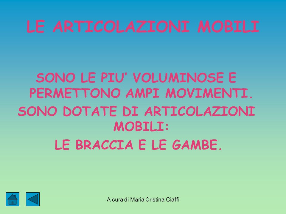 A cura di Maria Cristina Ciaffi LE ARTICOLAZIONI MOBILI SONO LE PIU VOLUMINOSE E PERMETTONO AMPI MOVIMENTI.