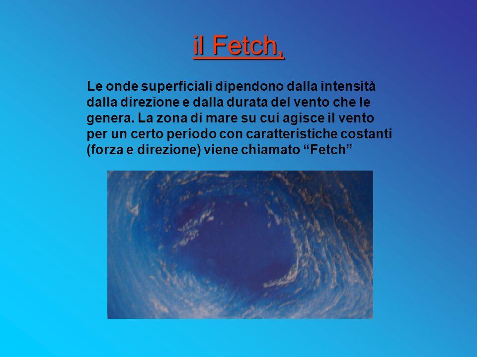 Caratteristiche delle onde superficiali LUNGHEZZA DONDA (L, lenght ): LUNGHEZZA DONDA (L, lenght ): distanza orizzontale tra due creste consecutive.
