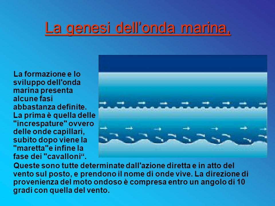 La genesi dellonda marina, La formazione e lo sviluppo dell'onda marina presenta alcune fasi abbastanza definite. La prima è quella delle