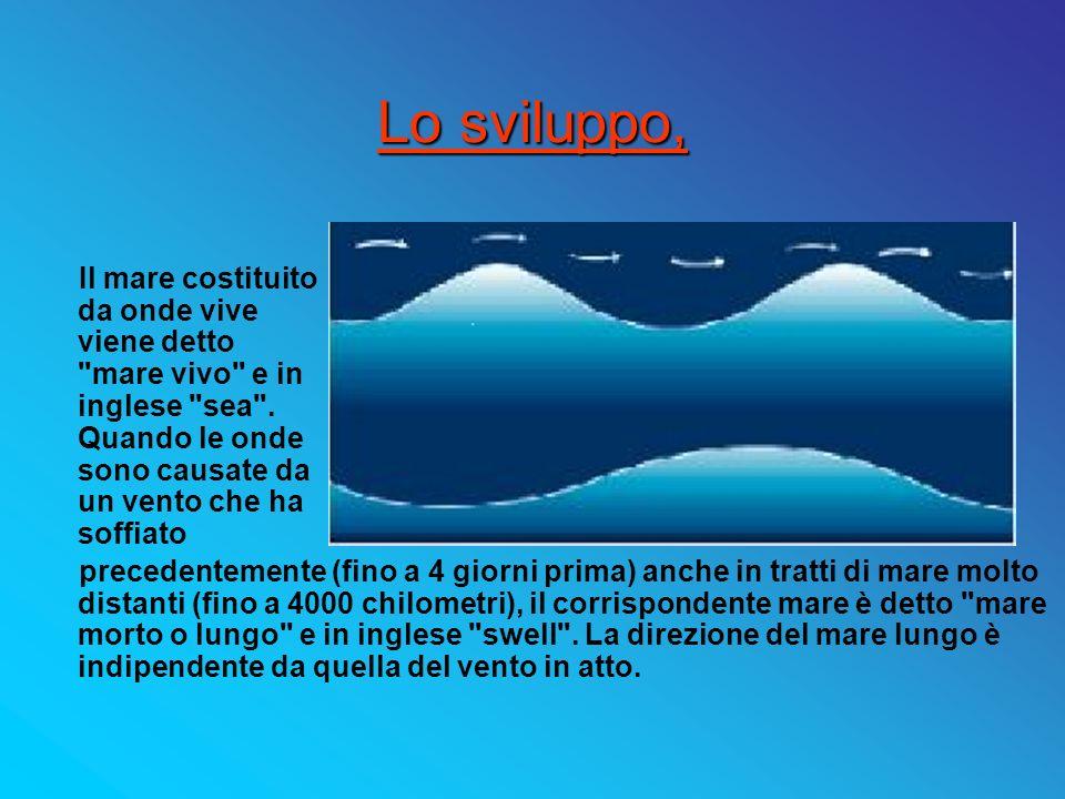 Propagarsi e affievolirsi del mare lungo Quando le onde si propagano oltre la zona in cui il vento le ha generate si ha il mare lungo .