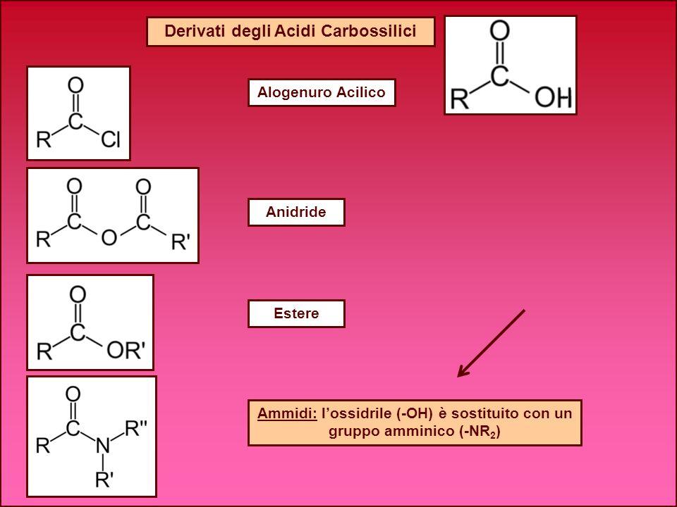 Ammidi: lossidrile (-OH) è sostituito con un gruppo amminico (-NR 2 ) Alogenuro Acilico Derivati degli Acidi Carbossilici Anidride Estere