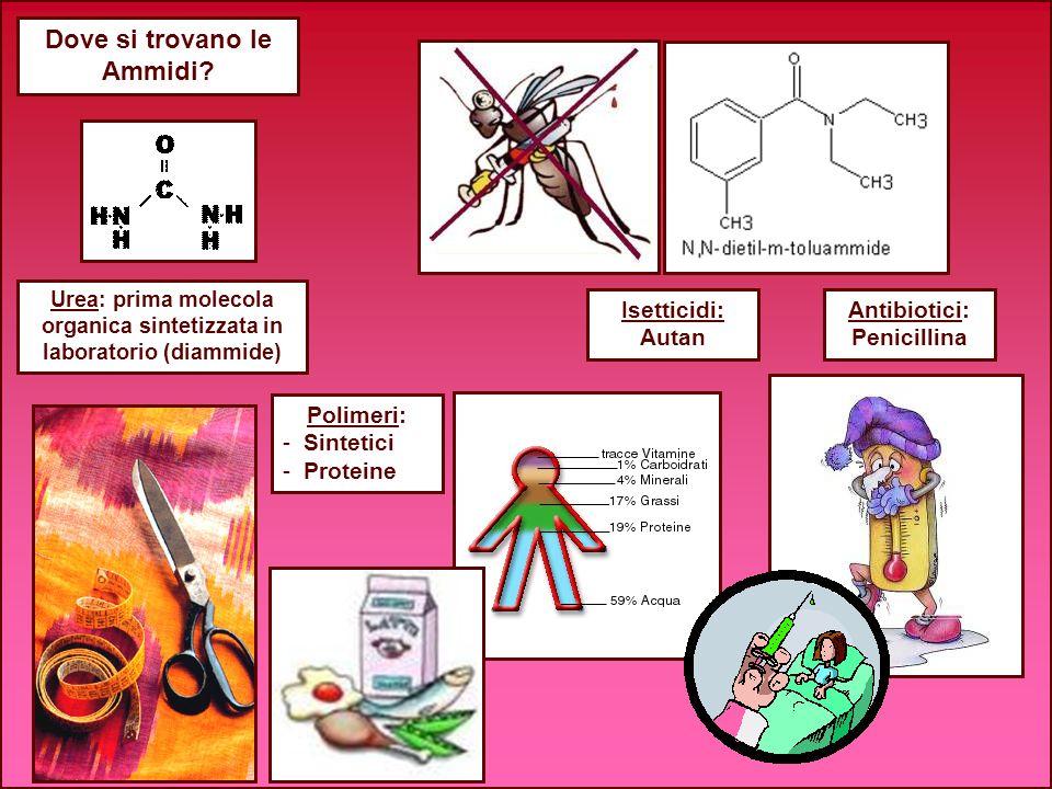 Dove si trovano le Ammidi? Isetticidi: Autan Antibiotici: Penicillina Urea: prima molecola organica sintetizzata in laboratorio (diammide) Polimeri: -