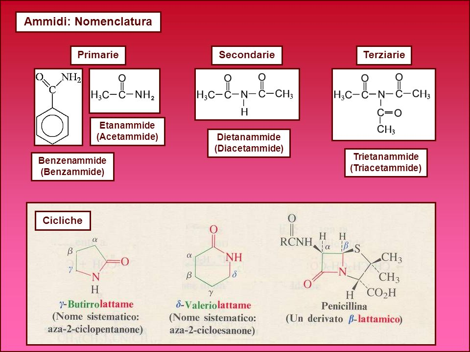 Ammidi: Nomenclatura PrimarieSecondarieTerziarie Benzenammide (Benzammide) Trietanammide (Triacetammide) Dietanammide (Diacetammide) Etanammide (Aceta