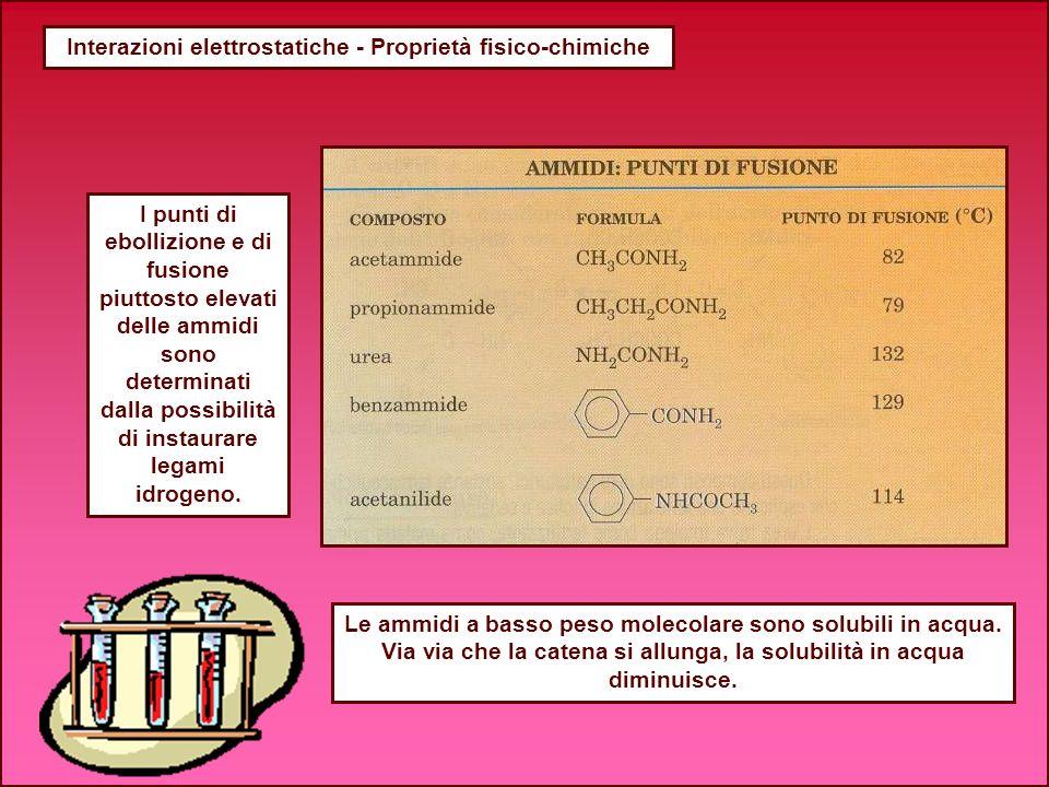 Interazioni elettrostatiche - Proprietà fisico-chimiche I punti di ebollizione e di fusione piuttosto elevati delle ammidi sono determinati dalla poss