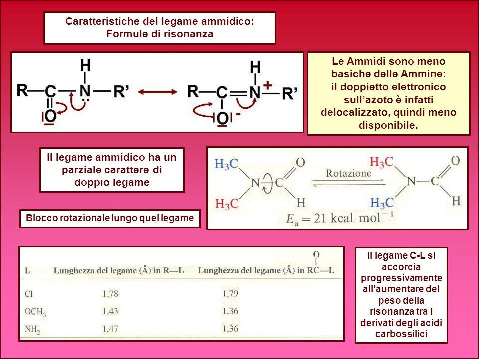 Caratteristiche del legame ammidico: Formule di risonanza Blocco rotazionale lungo quel legame Le Ammidi sono meno basiche delle Ammine: il doppietto