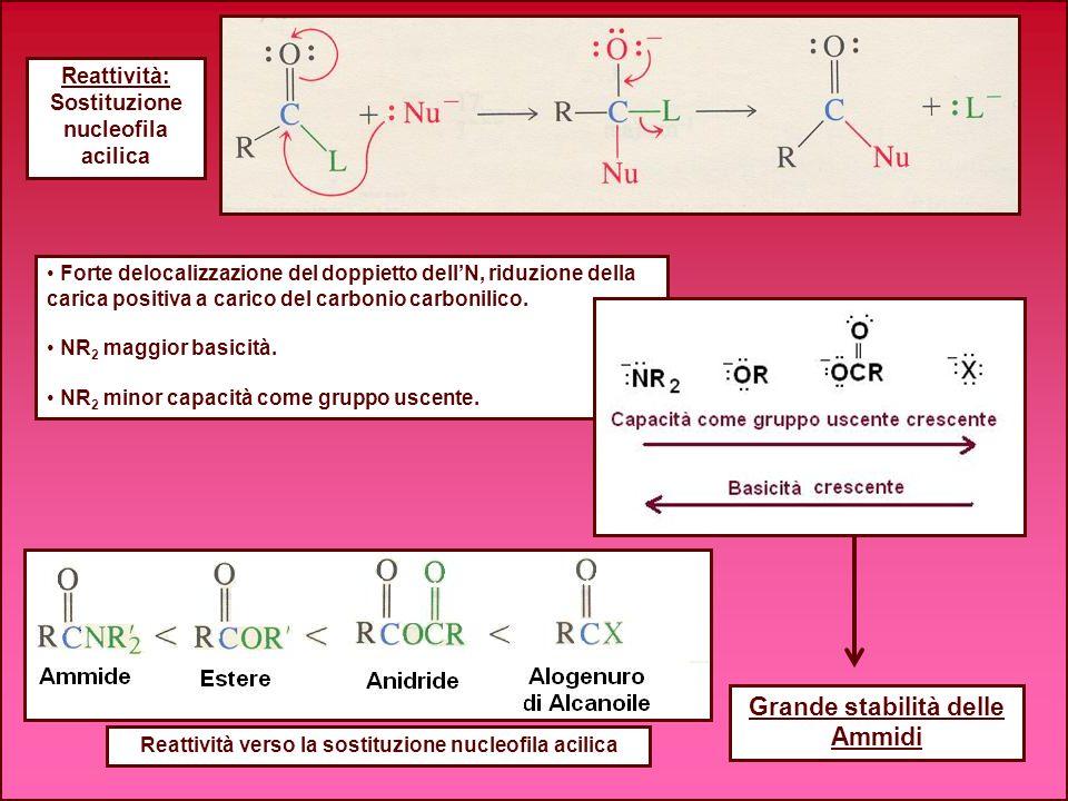 Grande stabilità delle Ammidi Reattività: Sostituzione nucleofila acilica Forte delocalizzazione del doppietto dellN, riduzione della carica positiva
