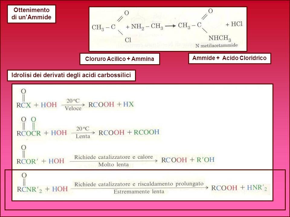 Ottenimento di unAmmide Cloruro Acilico + Ammina Ammide + Acido Cloridrico Idrolisi dei derivati degli acidi carbossilici