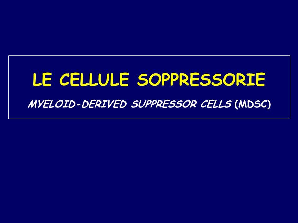 MYELOID-DERIVED SUPPRESSOR CELLS (MDSC) o Prime osservazioni più di 20 anni fa in pazienti con patologie tumorali (Young et al., 1987; Buessow et al., 1984; Seung et al., 1995).