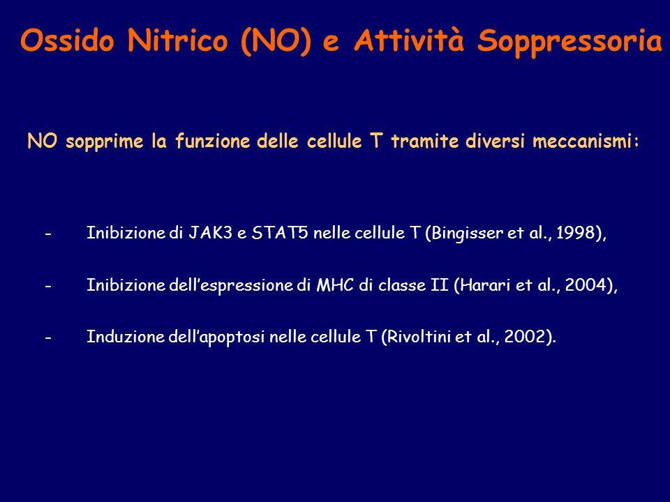 Ossido Nitrico (NO) e Attività Soppressoria NO sopprime la funzione delle cellule T tramite diversi meccanismi: -Inibizione di JAK3 e STAT5 nelle cell