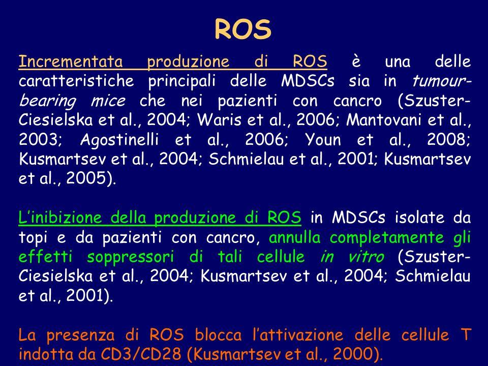 Incrementata produzione di ROS è una delle caratteristiche principali delle MDSCs sia in tumour- bearing mice che nei pazienti con cancro (Szuster- Ci