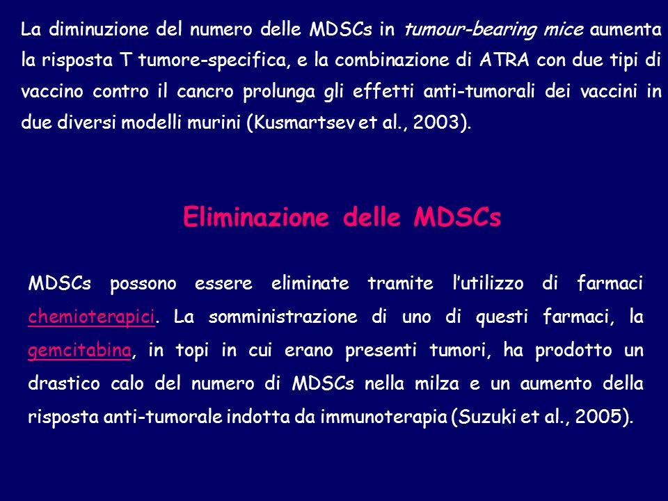 La diminuzione del numero delle MDSCs in tumour-bearing mice aumenta la risposta T tumore-specifica, e la combinazione di ATRA con due tipi di vaccino