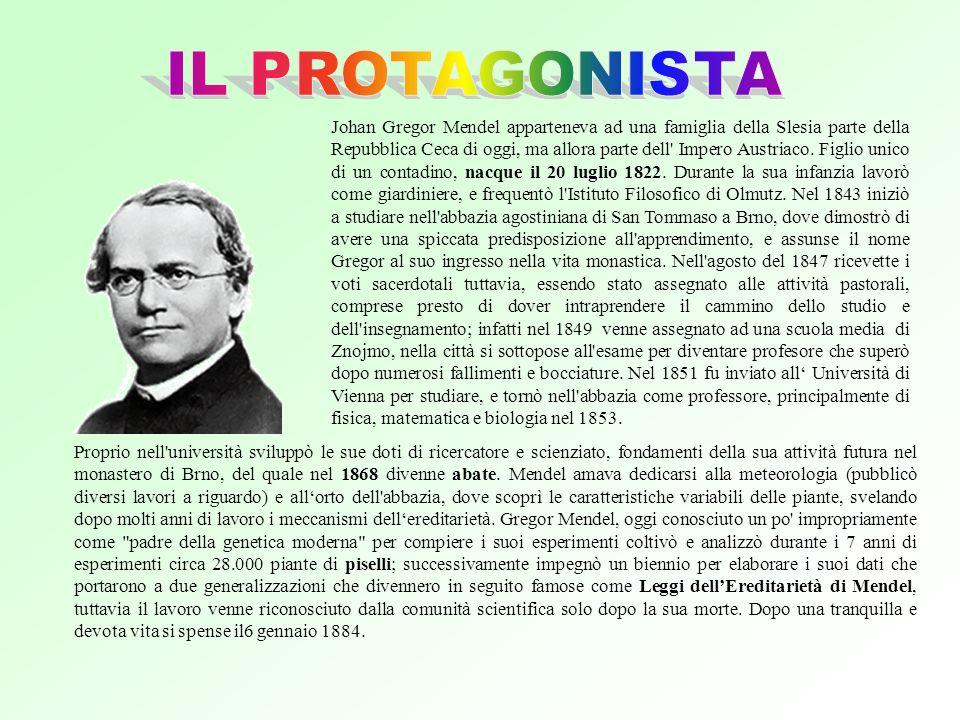 Johan Gregor Mendel apparteneva ad una famiglia della Slesia parte della Repubblica Ceca di oggi, ma allora parte dell Impero Austriaco.