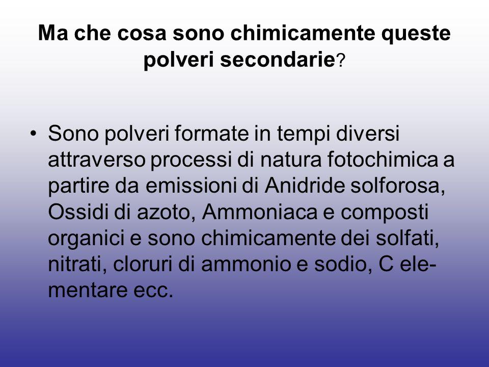 Ma che cosa sono chimicamente queste polveri secondarie ? Sono polveri formate in tempi diversi attraverso processi di natura fotochimica a partire da