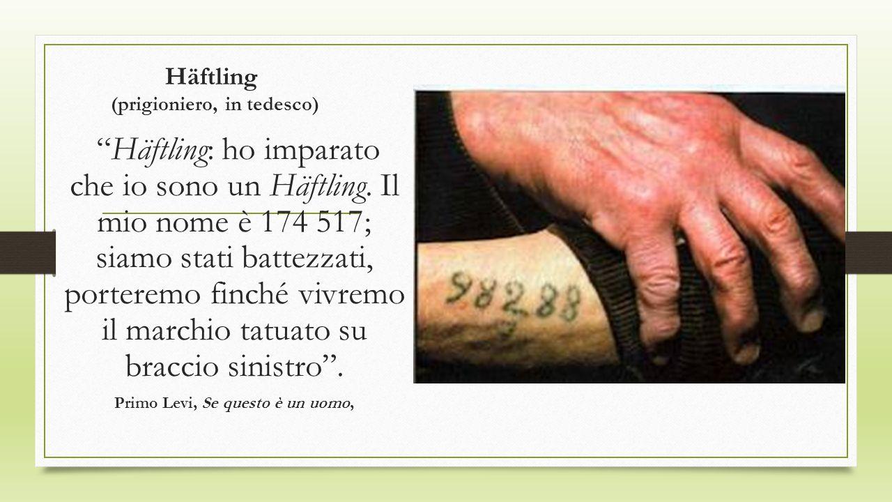 Häftling (prigioniero, in tedesco) Häftling: ho imparato che io sono un Häftling. Il mio nome è 174 517; siamo stati battezzati, porteremo finché vivr