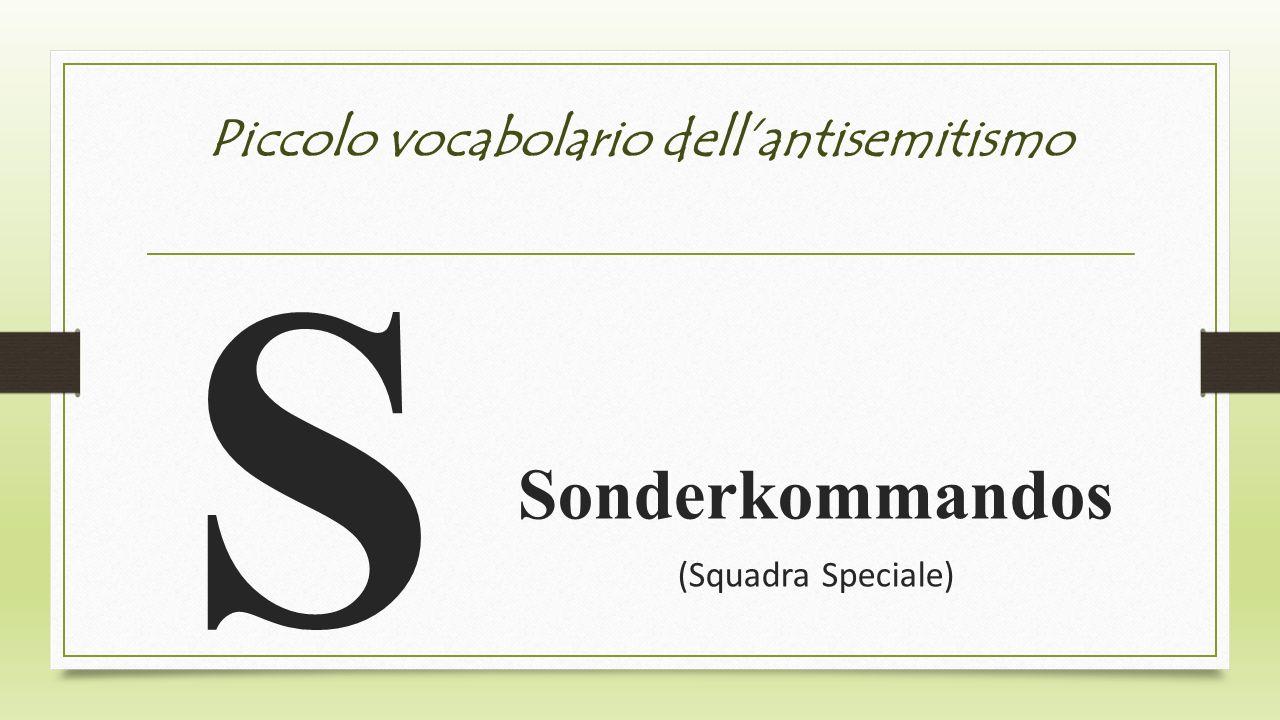 Piccolo vocabolario dellantisemitismo S Sonderkommandos (Squadra Speciale)