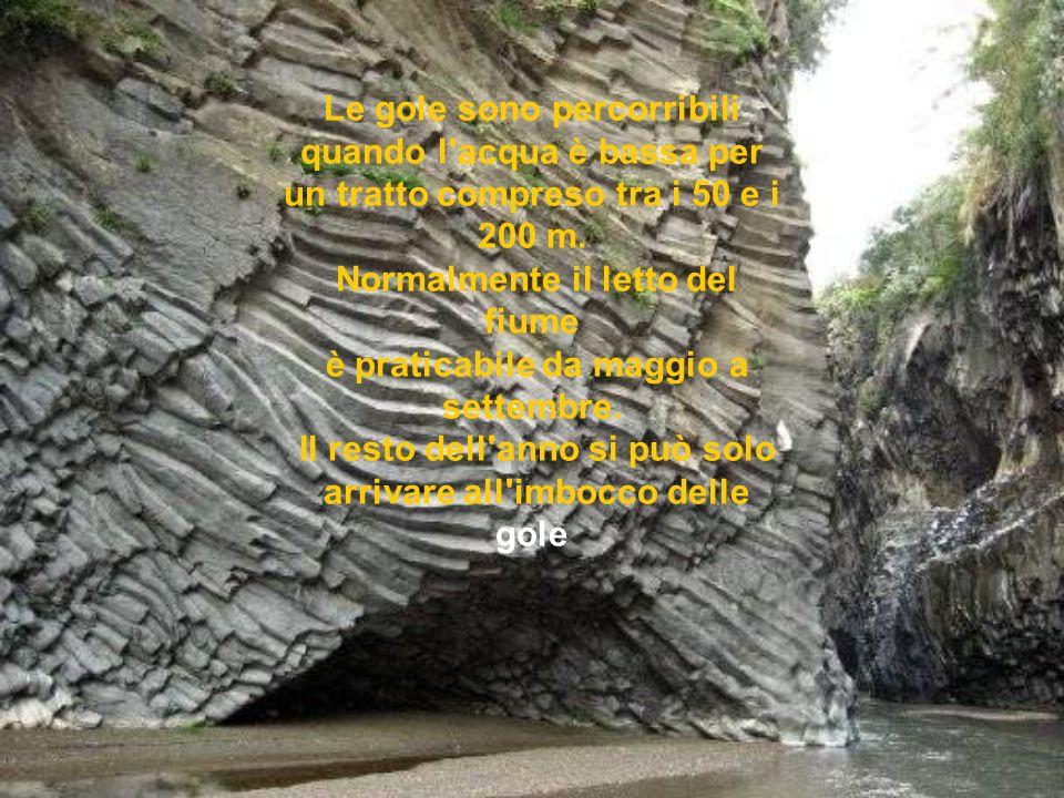 Arrivati al letto del fiume le pareti, alte più di 50 m. stringono in mezzo una lingua d'acqua e si presentano in tutta la loro ambigua bellezza: nere