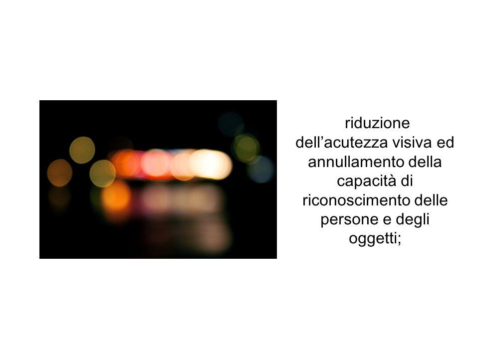 riduzione dellacutezza visiva ed annullamento della capacità di riconoscimento delle persone e degli oggetti;