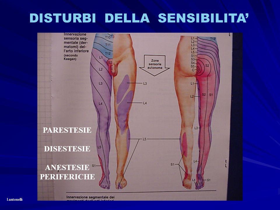 DISTURBI DELLA SENSIBILITA PARESTESIE DISESTESIE ANESTESIE PERIFERICHE l.antonelli