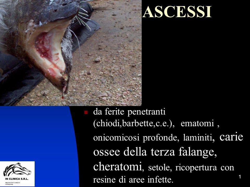 1 ASCESSI da ferite penetranti (chiodi,barbette,c.e.), ematomi, onicomicosi profonde, laminiti, carie ossee della terza falange, cheratomi, setole, ri
