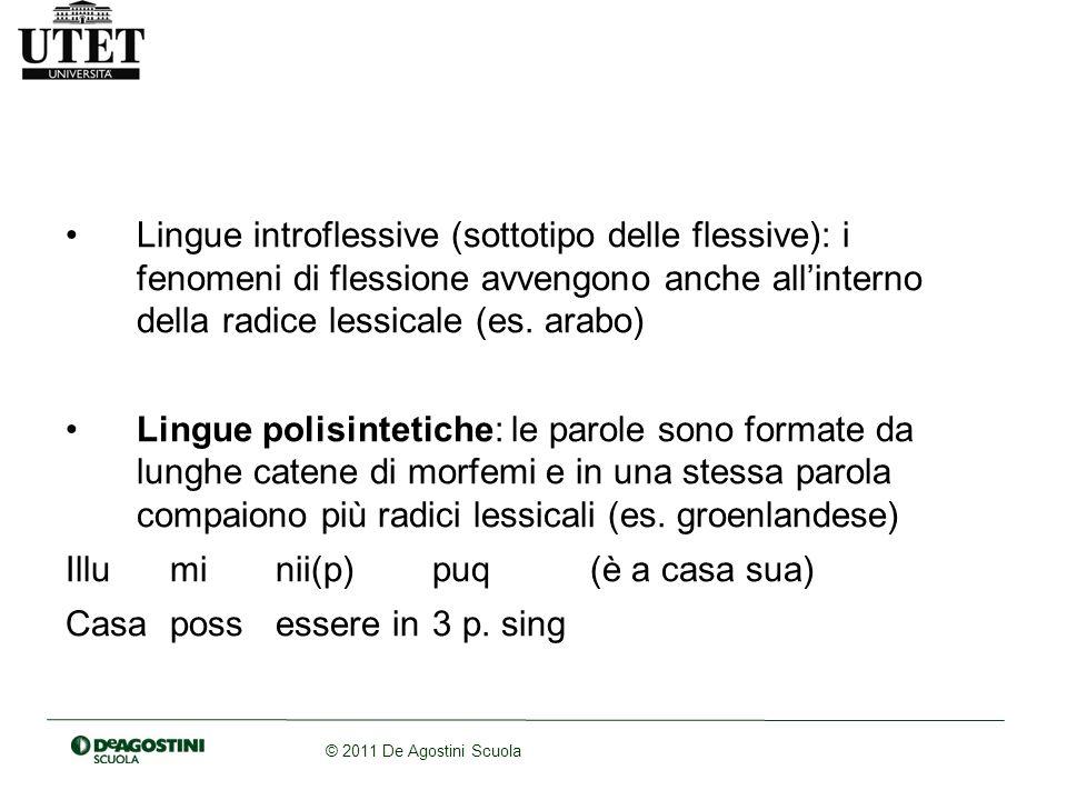 © 2011 De Agostini Scuola Lingue introflessive (sottotipo delle flessive): i fenomeni di flessione avvengono anche allinterno della radice lessicale (es.