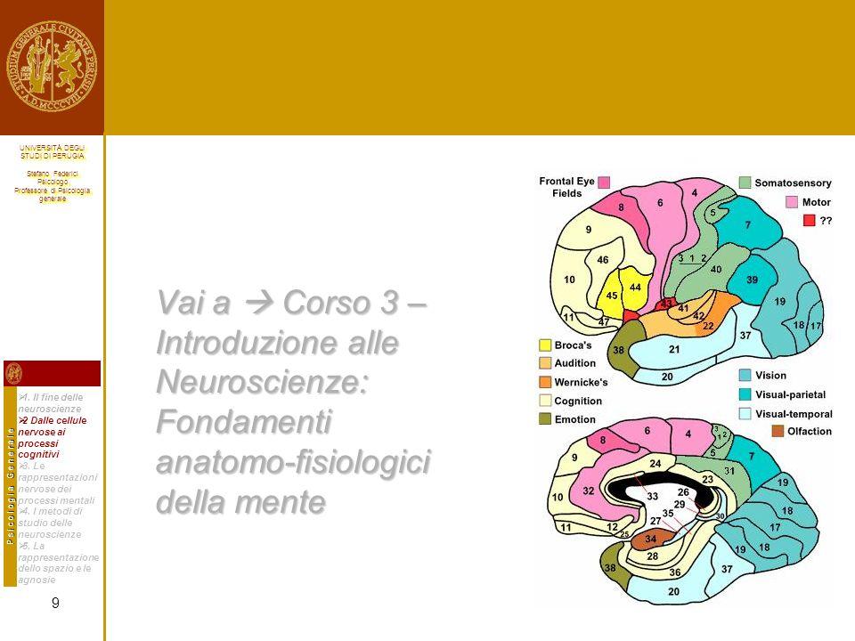 UNIVERSITÀ DEGLI STUDI DI PERUGIA Stefano Federici Psicologo Professore di Psicologia generale UNIVERSITÀ DEGLI STUDI DI PERUGIA Stefano Federici Psicologo Professore di Psicologia generale I 5 diversi metodi di studio delle neuroscienze: i processi cognitivi di ordine superiore Ricerche a livello cellulare condotte nella Scimmia sono state in grado di correlare la scarica di singoli neuroni di particolari regioni cerebrali con processi cognitivi di ordine superiore, quali lattenzione e i processi decisionali.