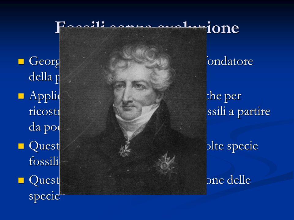 Fossili senza evoluzione George Cuvier (1769 – 1832) fu il fondatore della paleontologia dei vertebrati George Cuvier (1769 – 1832) fu il fondatore de