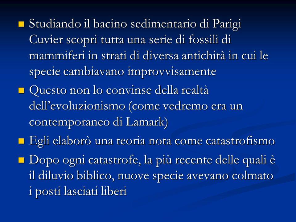 Studiando il bacino sedimentario di Parigi Cuvier scopri tutta una serie di fossili di mammiferi in strati di diversa antichità in cui le specie cambi
