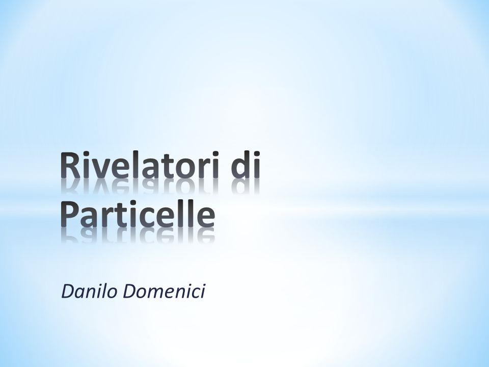 Danilo Domenici